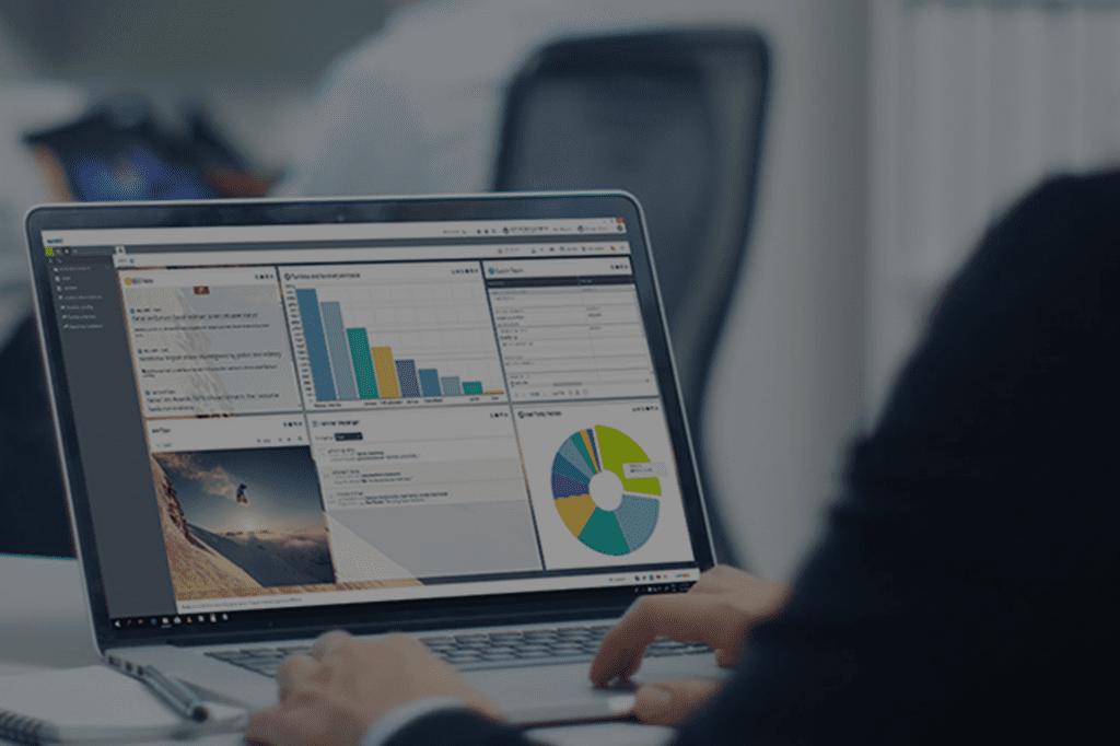 Soft1 ERP User Level I & Workshop